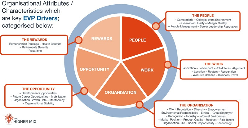 Characteristics EVP  Employee Experience   The Higher Mix