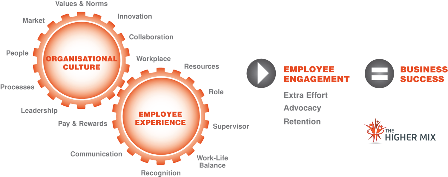 Culture-Employee Experience Model The Higher Mix